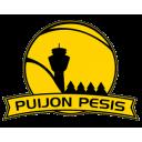 Puijon Pesis, Kuopio